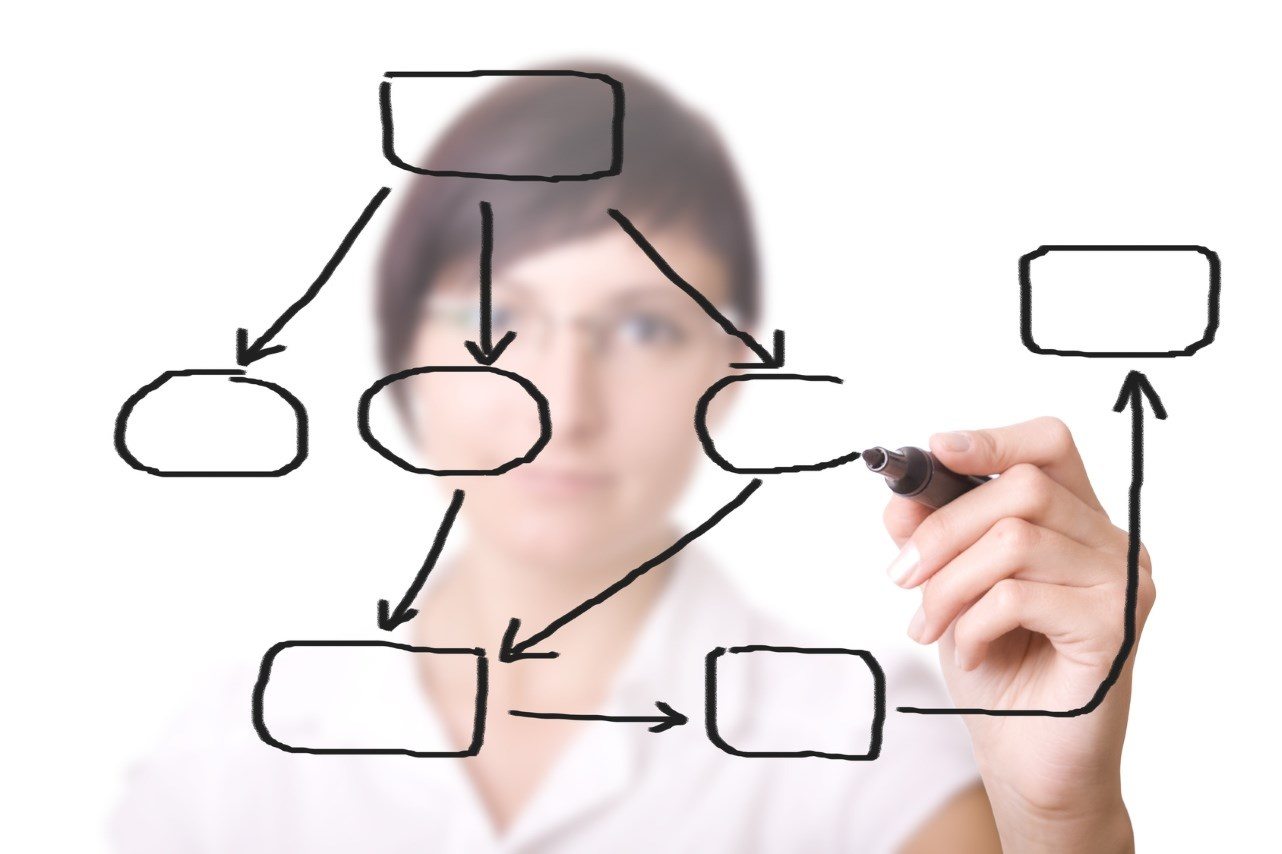 businesswoman with an empty diagram on white background.